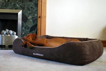 Red Dingo Hundbädd, Taupe Large