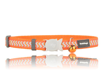 Ziggy Cat Orange