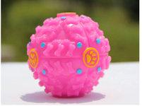 Slowfeed Aktivitetsboll Rosa