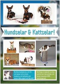 Reklamblad hundsele-kattsele A4