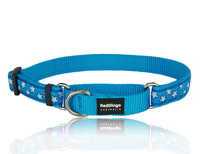 Stars Martingale dog collar tq